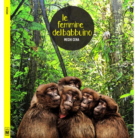Le femmine del babbuino - ebook